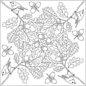 sonbahar-mandala-etkinligi5