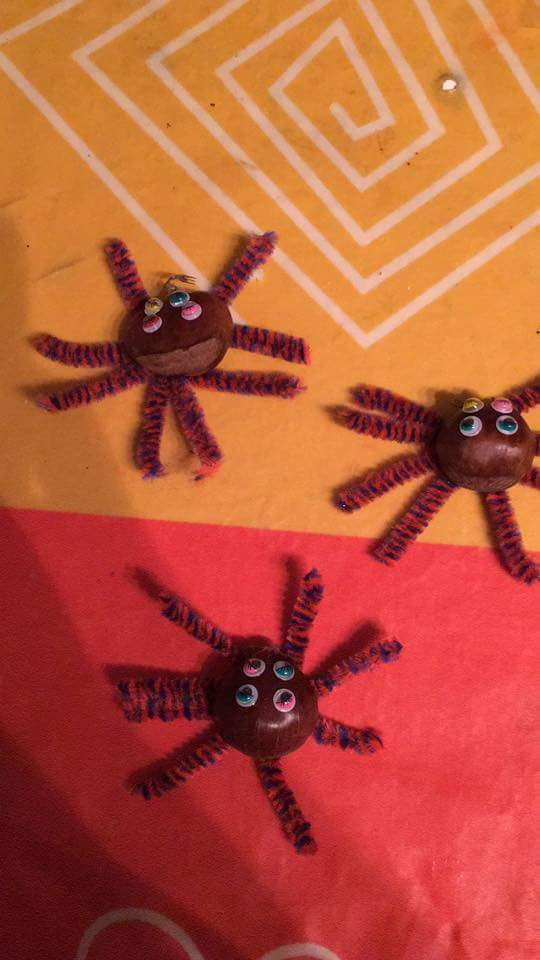 Photo of Kestaneden Örümcek Yapımı