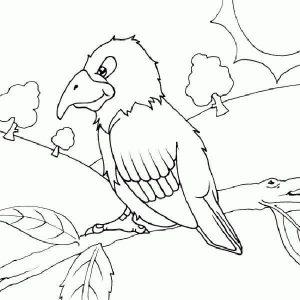 Indirin Ve Yazdirin Papagan Boyama Sayfasi Resim Boyama