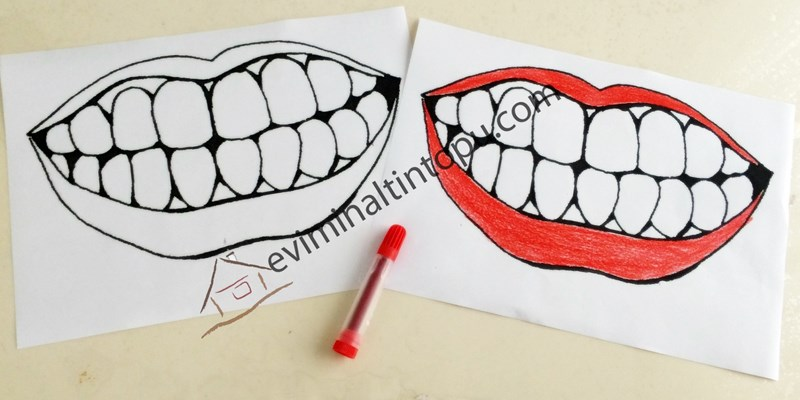 Diş Fırçalama Etkinliği Evde Eğlenceli Etkinlikerimiz Evimin Altın
