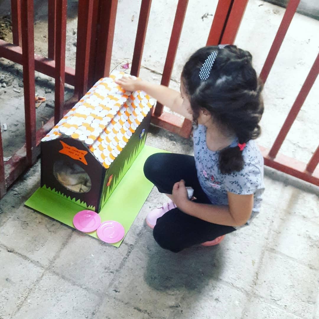 Photo of Sokak Hayvanları İçin Ev Yapımı Barınak