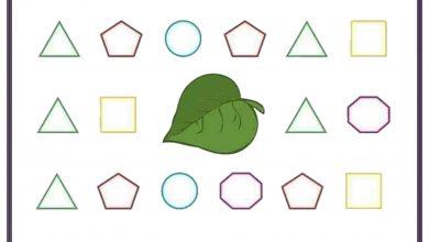 Photo of Geometrik Şekil Öğretimi İçin Çıktılar